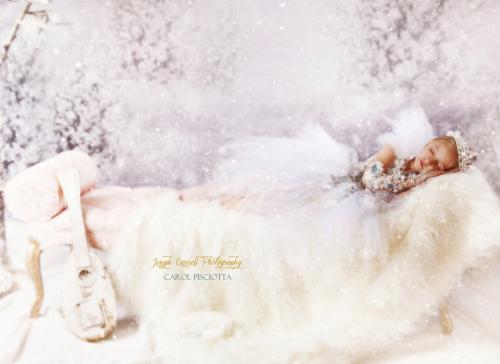 CAROL PISCIOTTA-JOSEHCARROLLPHOTOGRAPHY  CRISTINAS DRESS 5